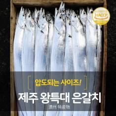 [프리미엄]제주 왕특대은갈치16토막(원물기준4마리분)/ 450g(4토막)×4팩 이미지