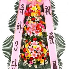 축하화환 일반형 (제주/강원 제외 전국 배송가능) 이미지