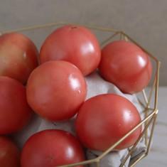 친환경 무농약 토마토 2kg 이미지
