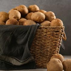 친환경 무농약 감자 10kg 이미지
