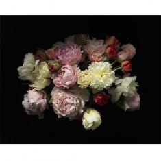 [갤러리 플로바리스] 프리미엄 플라워 캔버스 작품 - 17 Century Flowers 이미지