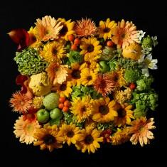 [갤러리 플로바리스] 프리미엄 플라워 캔버스 작품 - Japanese Flowers 이미지
