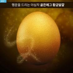 [신년대박기원] 황금란 30구 한판 <br> 무항생제 맥반석 달걀 이미지