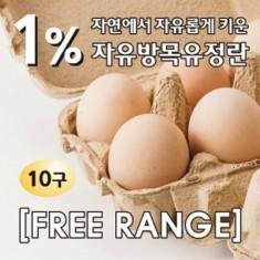 [청솔원] 동물복지 자유방목 유정란 10구 이미지