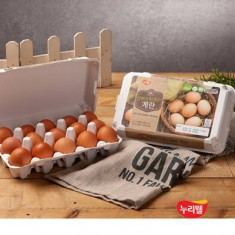[누리웰] 알맹이가 탱글탱글한 1등급 계란 15구 이미지